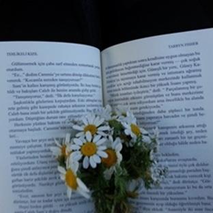 Yetişkin Kitapları -Tehlikeli Kızıl-