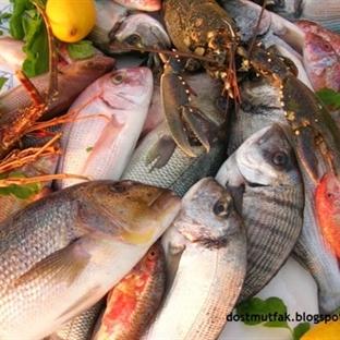 Balık Rehberi (Hangi Aylarda Hangi Balıklar Tüketi
