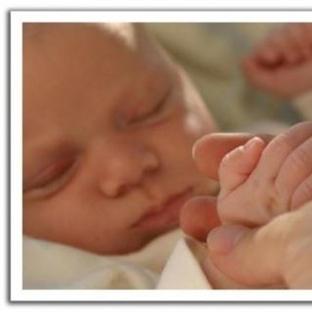 Bebek Gelişimi 1. Ay