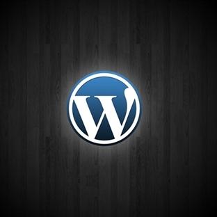 Blogunuzdan Bu Eklentileri Eksik Etmeyin (WordPres