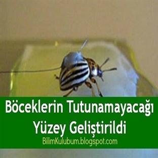 Böceklerin Tutunamayacağı Yüzey Geliştirildi