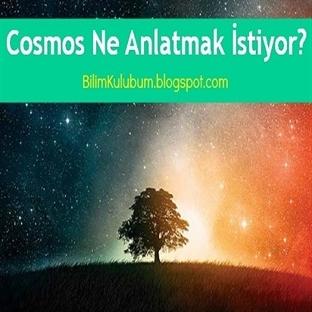Cosmos Ne Anlatmak İstiyor?