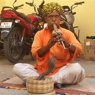 Hindistan Tatili Kaça Mal Olur