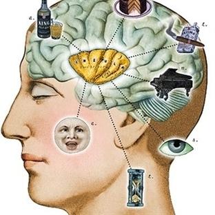 IQ Seviyenizi Düşüren Faktörler