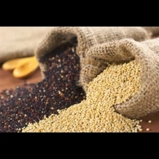 Kinoa ( quinoa) Nedir