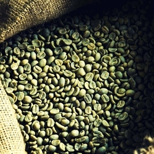 Yeşil Kahve Çekirdeği