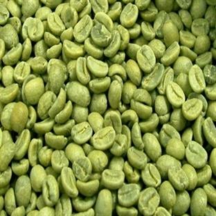 Yeşil Kahvenin Zayıflatıcı Etkisi Varmı?