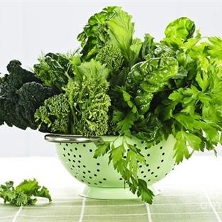 Yeşillikler Nasıl Saklanır?