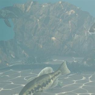 Artık denizden antibiyotik çıkarılacak