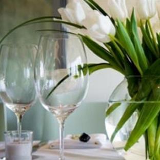 Evinize Çiçekli Bir Dokunuş İçin Zaman Lale Zamanı