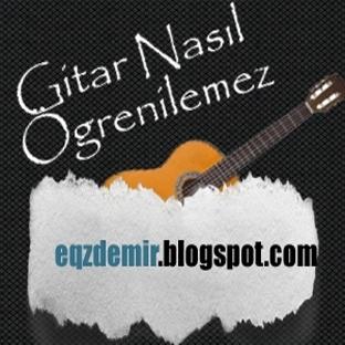 Gitar Nasıl Öğrenilemez ?