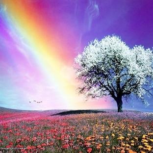 Gökkuşağı Renkleri ve Anlamları Nelerdir