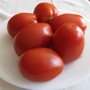 kahvaltılık taze domates sosu nasıl yapılır