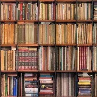 Kitap Okuma Üzerine