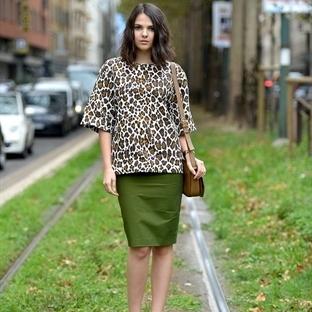 Moda: Safari