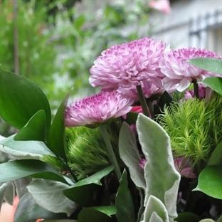 Tatlı Huzur' da Çiçek Atölyesi