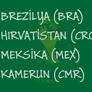 2014 Dünya Kupası: A Grubu