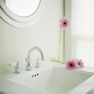 Banyoda Hangi Çiçekler Yetişir?