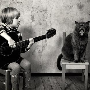 Bir Çocuk, Bir Kedi