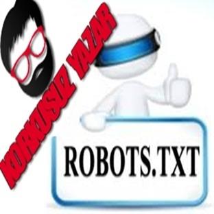 Blogger SEO Uyumlu Robots.txt oluşturma