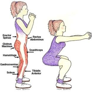İç Bacak Çalıştırmak İçin Egzersizler