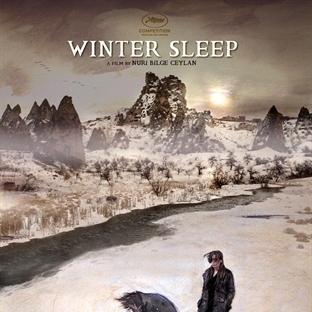 Kış Uykusu'ndan Uyanamama Hali