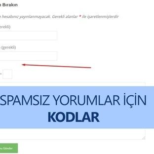 WordPress Yorum URL Alanını Kapatma ve Öncekileri