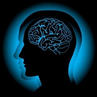 Yabancı Dil Öğrenmek Beynin Yaşlanmasını Önlüyor