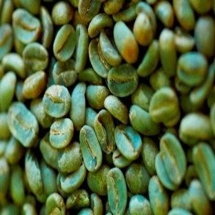 Yeşil Kahve Çekirdeği ve Faydaları