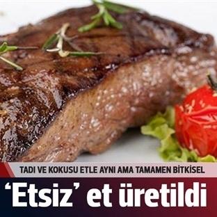 Et İçermeyen Et Üretildi