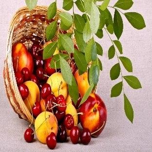 Gençleştiren ve Cildi Koruyan Meyveler