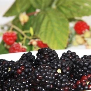 Güzelliğinize güzellik katacak meyveler
