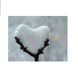 Kar tanesi (bir şiir incelemesi) – Alim Adil Tüzün