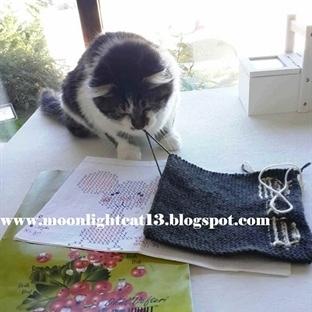 Kedi - Fare Oyunu Battaniyem -2- Yapım Aşamaları: