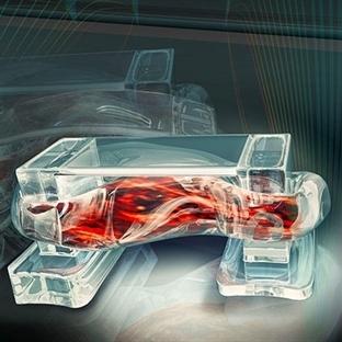 Yaşayan Kas Hücresinden Kontrollü Biyobot Yapıldı