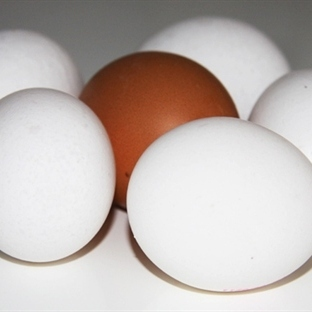 Yumurtayı pişirmeden önce yıkayın neden mi?
