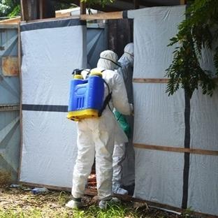 ABD: Batı Afrika'ya Gitmeyin Ebola Var!