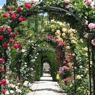 Bahçe Dekorasyonu Nasıl Olmalı ?
