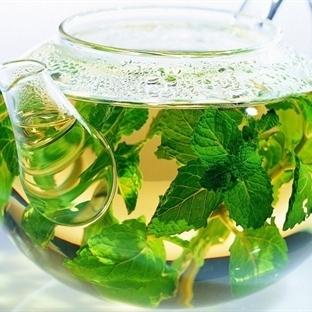 Bitkisel Çaylarla Vücudunuzu Forma Sokun