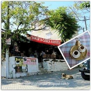 Dibek kahvenin adresi: Foça - Kozbeyli Köyü