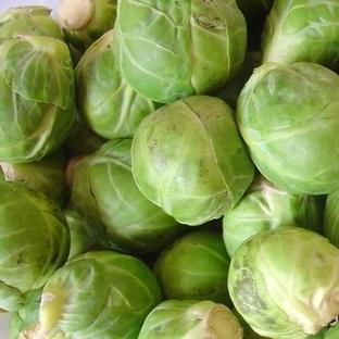 Diyette brüksel lahanası