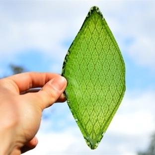 Dünyanın Oksijen Üreten İlk Sentetik Yaprağı