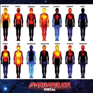 Duyguları vücudumuzun neresinde hissederiz?