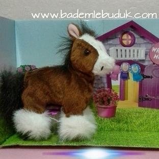 evde pony beslenir mi?