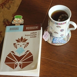 Haruki Murakami'nin kitabı yabankoyununizinde