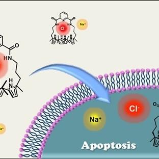 Kanserli Hücreleri Yok Eden Tuz Taşıyan Molekül