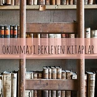 Kitaplıkta Unutulan Kitaplar