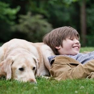 Konuşamayan çocuklara köpekle tedavi