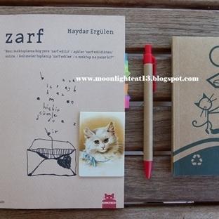 Okuma Halleri, Fotoğraflarla - Zarf / Haydar Ergül
