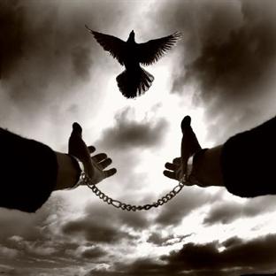 Özgürlüğün Sessizliği